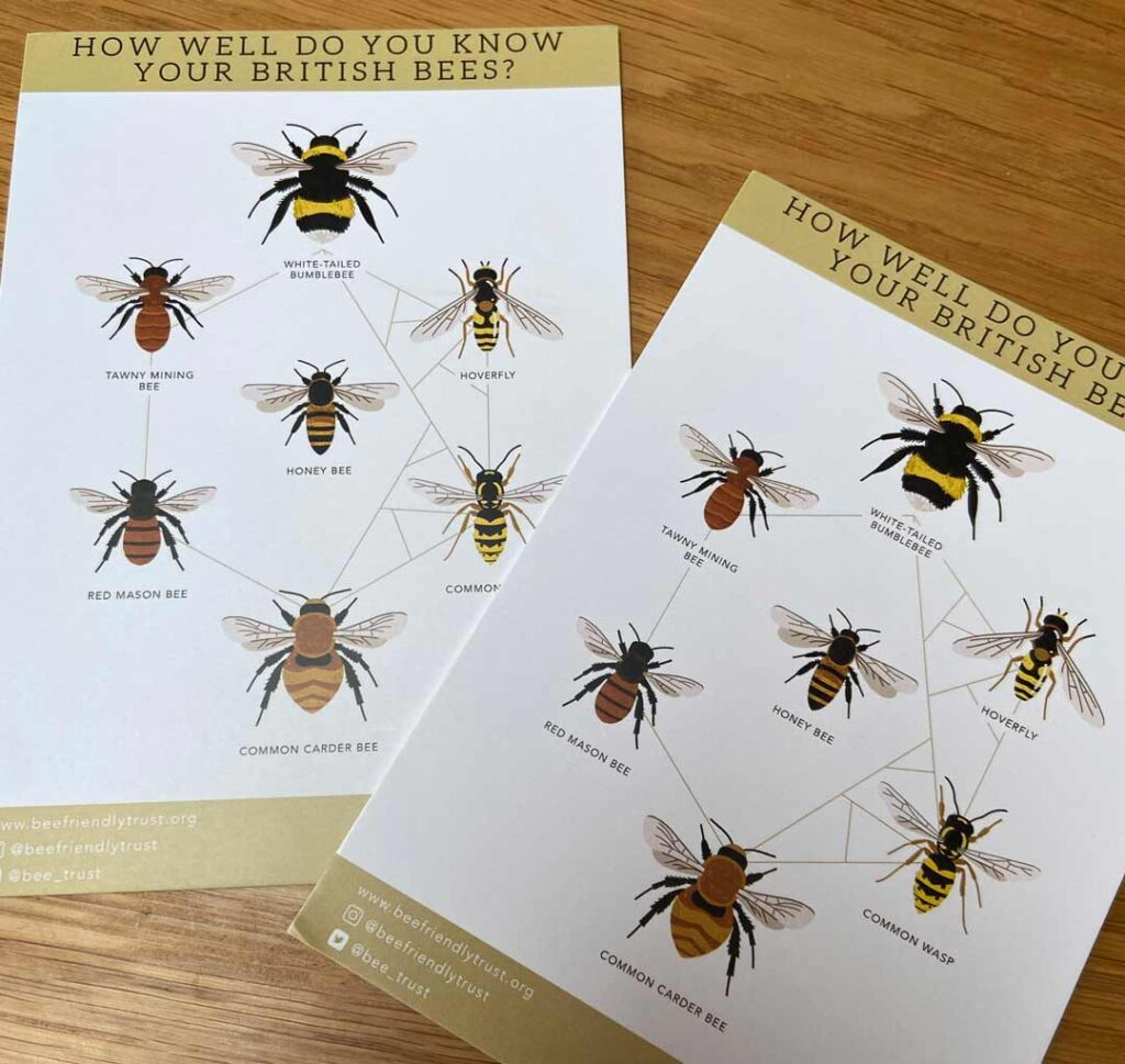 How well do you know your British Bees Flyer
